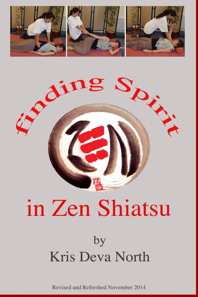 cover_findingspirit