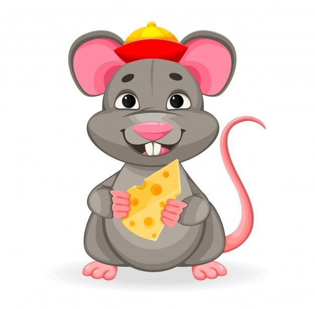 Rat_funny